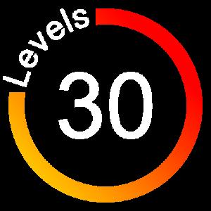 HTS_main_levels_icon copy